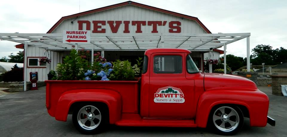 devitts nursery